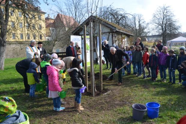 Baumpflanzaktion im Zeitzer Schlosspark März 17