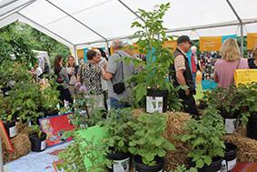 Bild 12: Tag des Gartens: Kartoffelausstellung